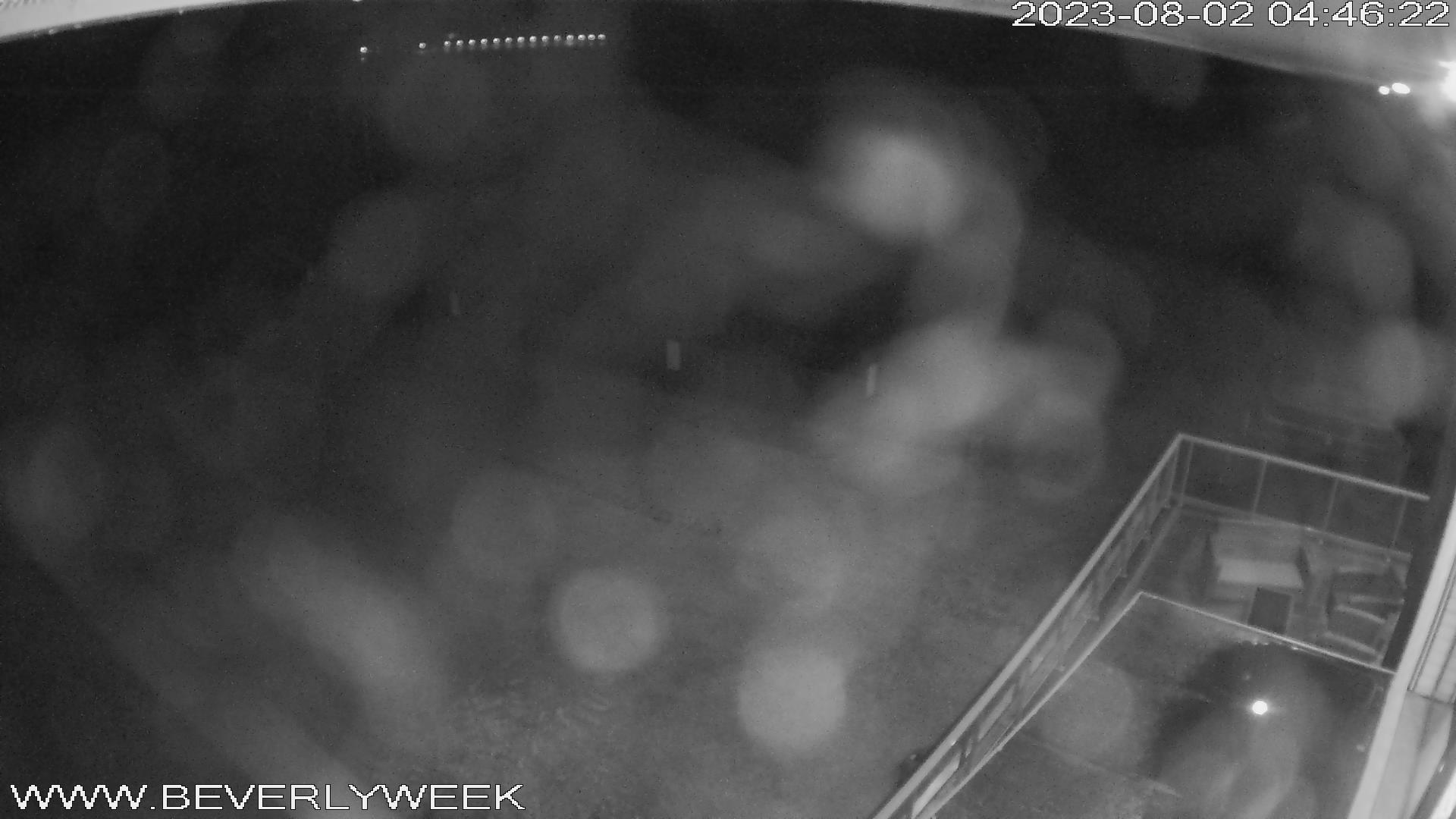 Bütgenbach – Bütgenbacher See Webcam Live